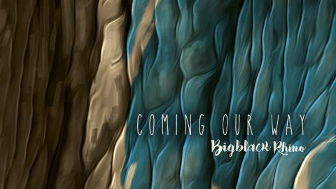 Single Bigblack Rhino, Coming Our Way, Thoughts Under The Skin, 2018